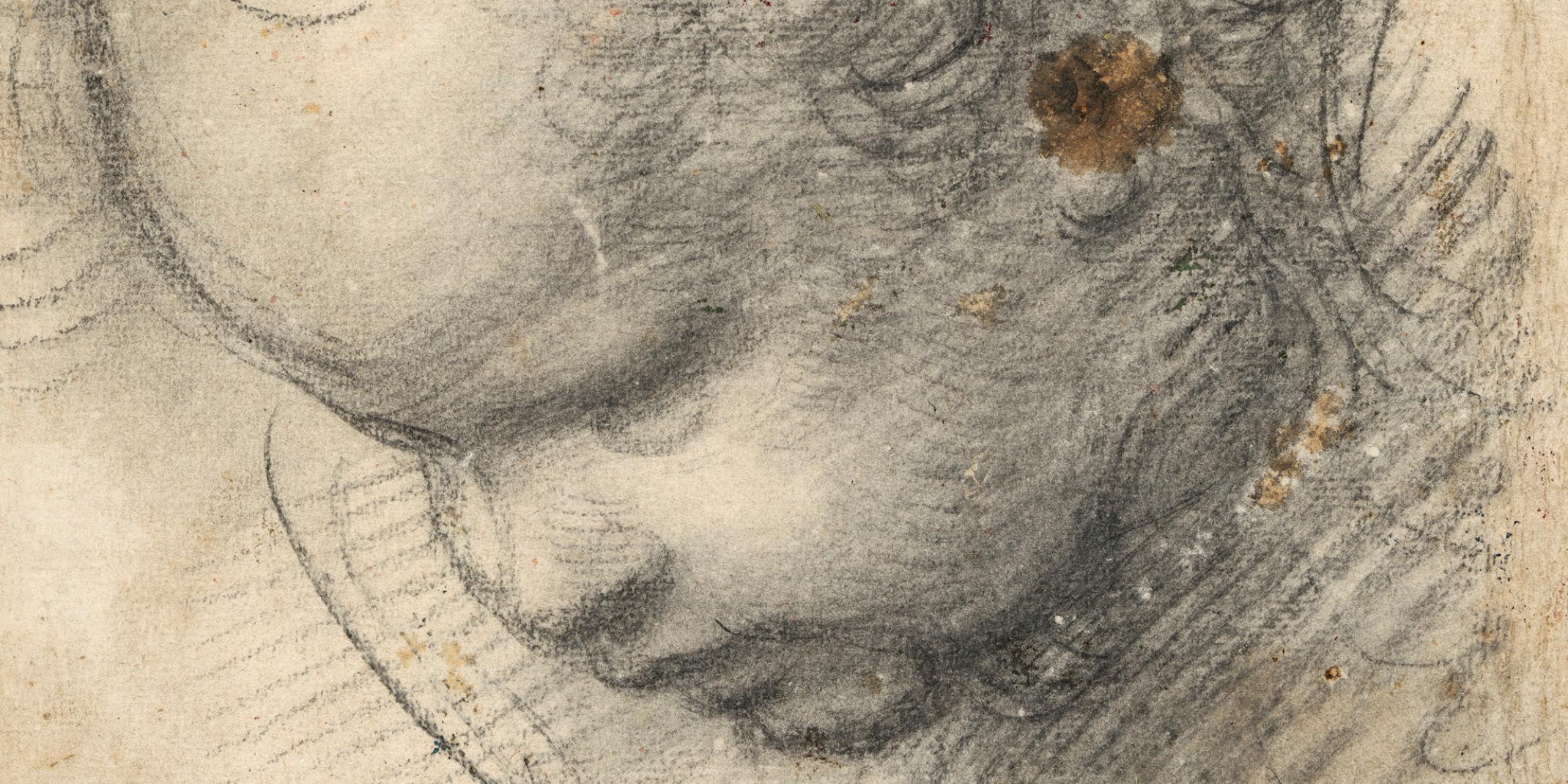 Raffael, eigentlich Raffaello Santi oder Sanzio (1483–1520) Kopf eines Cherubs, um  1509, © Hamburger Kunsthalle, Kupferstichkabinett / bpk Foto: Christoph Irrgang